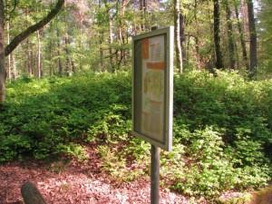 Tafel und Grabhügel auf dem Archäologischen Wanderpfad Fischbeker Heide